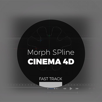 Cinema 4D - Morph SPline