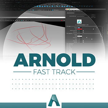 Arnold - Curve Collector